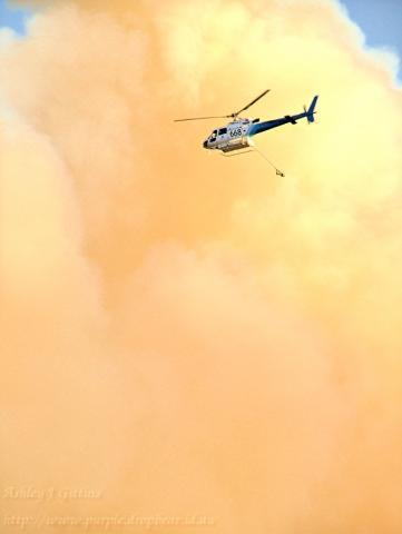 We have had a couple of largish bushfires around Keperra and the Gap over the last two days, this afternoon it really took off. Our Fire & Rescue guys were going hard at it in the choppers protect
